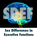 Research - SDEF